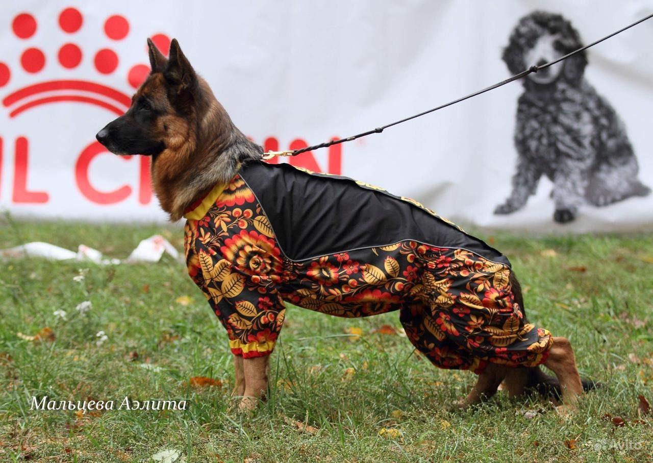 Одежда для собак и кошек ручной работы