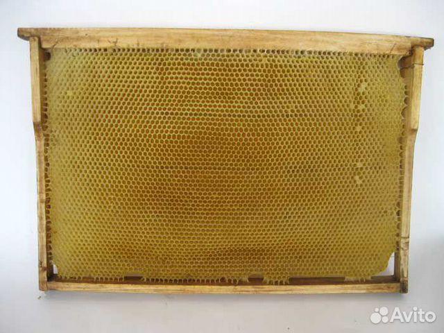 89203756586 Сушь, рамки для пчел