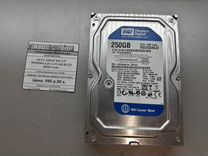 """Жесткий диск SATA 250Gb WD Blue 3,5"""" — Товары для компьютера в Краснодаре"""