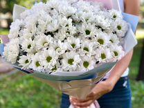 Хризантема букет цветы