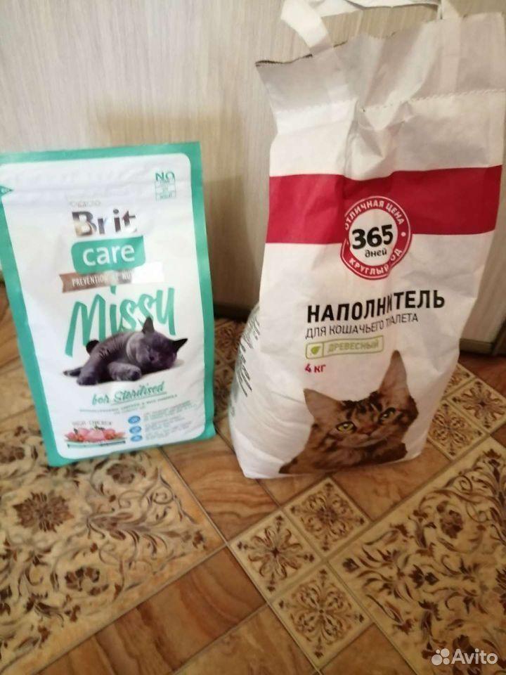 89505653882  Корм для кошек + Древесный Наполнитель