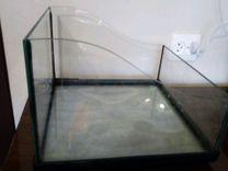 Черепашник — Аквариум в Геленджике