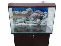 Новые аквариумы в наличии